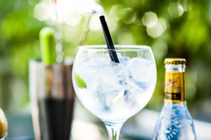 GIN TONIC Beefeater
